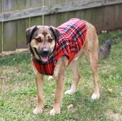 Red Plaid Fleece Coat